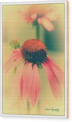 Coneflower Wood Print by Susan  Lipschutz