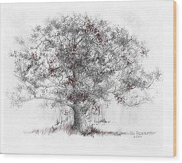 Connecticut - White Oak Wood Print