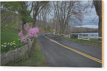Wood Print featuring the photograph Connecticut Country Road by Bill Wakeley