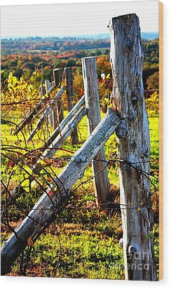 Connecticut Winery In Autumn Wood Print