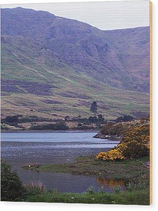 Connemara Leenane Ireland Wood Print by Teresa Mucha