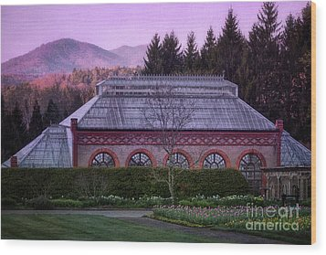 Conservatory At Biltmore Estate Wood Print by Doug Sturgess
