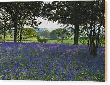 Constable Country Wood Print by Gary Eason