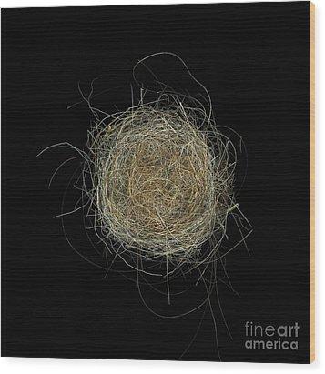 Construction Nr. 2 Wood Print by Christian Slanec