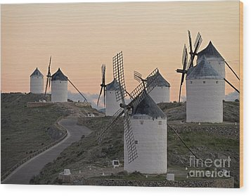 Wood Print featuring the photograph Consuegra Windmills by Heiko Koehrer-Wagner