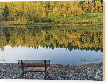 Wood Print featuring the photograph Contemplating The Colors Of A Colorado Autumn by John De Bord