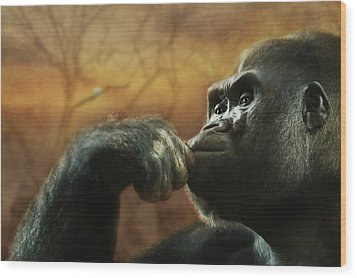 Wood Print featuring the photograph Contemplation by Lori Deiter
