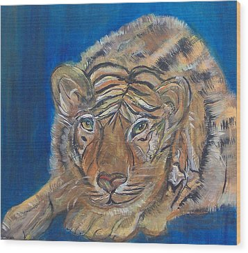 Contented Tiger Wood Print by Mikki Alhart