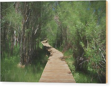 Wood Print featuring the photograph Convict Lake Loop Trail by Donna Kennedy