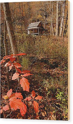 Cook Cabin Wood Print by Alan Lenk