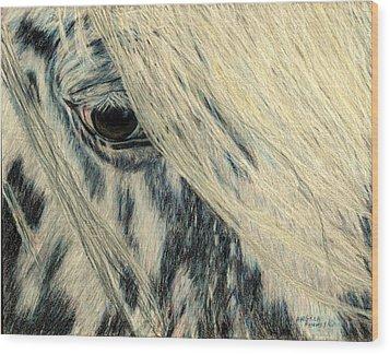 Cookie's Eye Wood Print by Angela Finney
