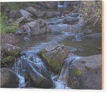 Wood Print featuring the photograph Cool Creek by Tammy Sutherland