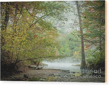 Wood Print featuring the photograph Cool Morning by Iris Greenwell