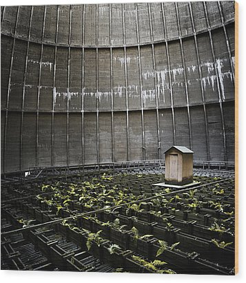 Wood Print featuring the photograph Cooling Tower Petit Maison by Dirk Ercken