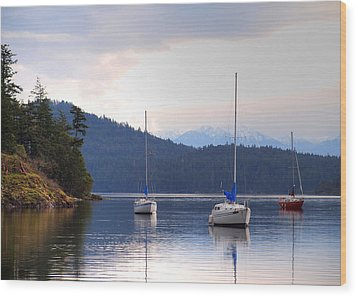 Cooper's Cove 1 Wood Print by Randy Hall