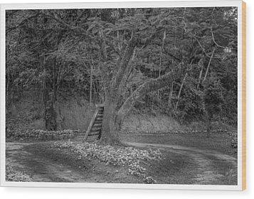 Copo De Leite-2-mendes-rj Wood Print