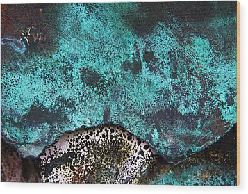 Copper Patina 2 Wood Print by Marcus Adkins