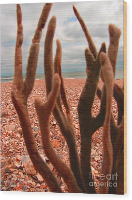 Wood Print featuring the photograph Coral Confusion by Laura Brightwood
