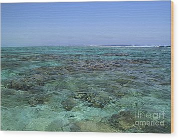 Wood Print featuring the photograph Coral Reef And Breakers by Edward R Wisell
