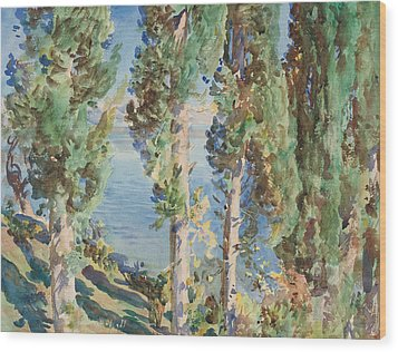 Corfu Cypresses Wood Print