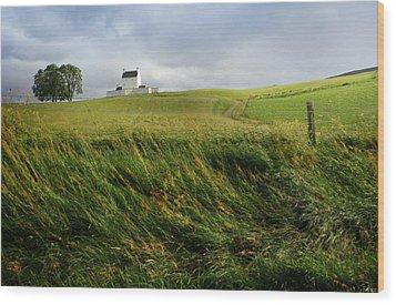 Corgarff Catle Wood Print by Warren Home Decor