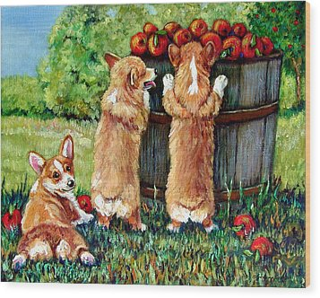 Corgi Apple Harvest Pembroke Welsh Corgi Puppies Wood Print by Lyn Cook