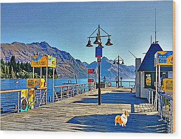 Wood Print featuring the drawing Corgi At Queenstown New Zealand by Kathy Kelly