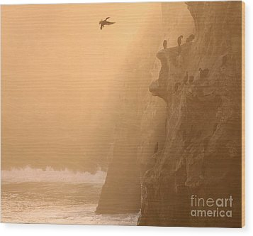 Wood Print featuring the photograph Cormorant Rookery In Dawn Fog by Max Allen