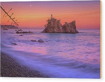 Cormorants Rock Wood Print