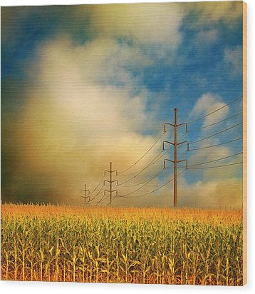 Corn Field At Sunrise Wood Print by Photo by Jim Norris