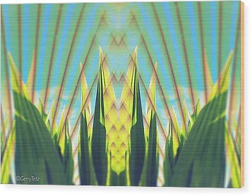 Cornfield At Sunrise Wood Print