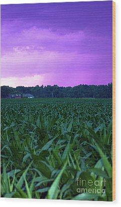 Cornfield Landscapes Purple Rain Wood Print by Cathy  Beharriell