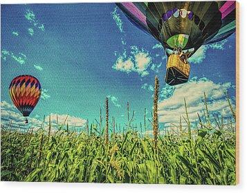 Cornfield View Hot Air Balloons Wood Print by Bob Orsillo