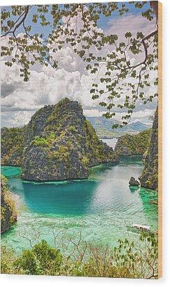 Coron Lagoon Wood Print by MotHaiBaPhoto Prints