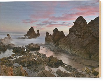 Wood Print featuring the photograph Corona Del Mar by Dung Ma