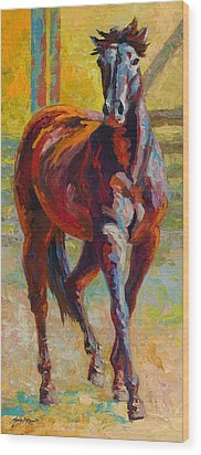 Corral Boss - Mustang Wood Print by Marion Rose