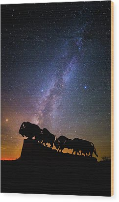 Wood Print featuring the photograph Cosmic Caprock Bison by Stephen Stookey