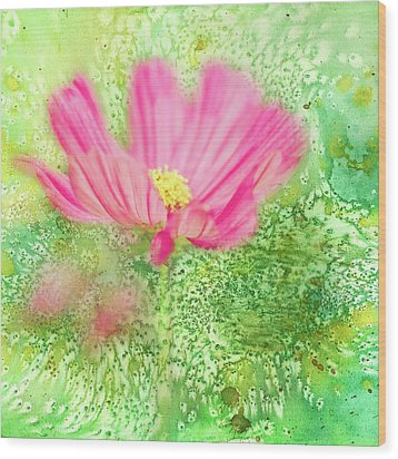 Cosmos On Green Wood Print