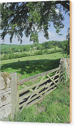Cotswolds Wood Print by Soundimageplus