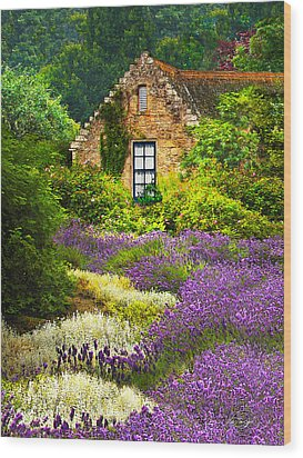 Cottage Amidst The Lavender Wood Print
