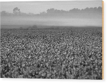 Cotton And Fog Wood Print by Michael Thomas