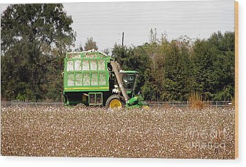 Cotton Picker Wood Print by Donna Brown