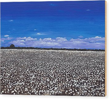 Cottonfields In Eastern Arkansas Wood Print by Cathy France