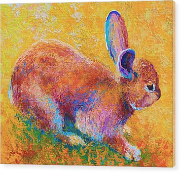 Cottontail II Wood Print by Marion Rose