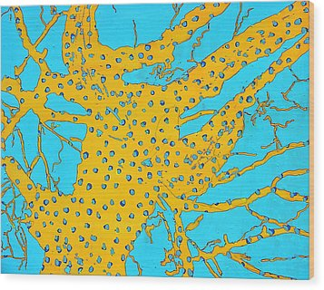 Cottonwood Seven Sea Invertebrate Wood Print by Ray  Petersen