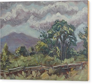 Cottonwoods At The Ranch Wood Print by Zanobia Shalks