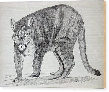 Cougar Wood Print by Daniel Shuford