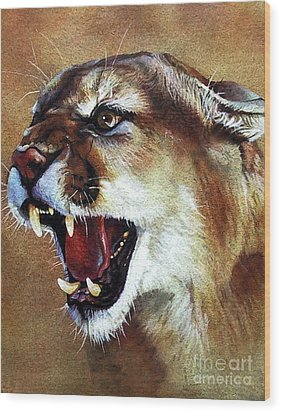 Cougar Wood Print by J W Baker