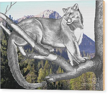 Cougar Mountain Wood Print by Russ  Smith