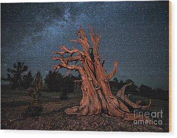 Wood Print featuring the photograph Countless Starry Nights by Melany Sarafis